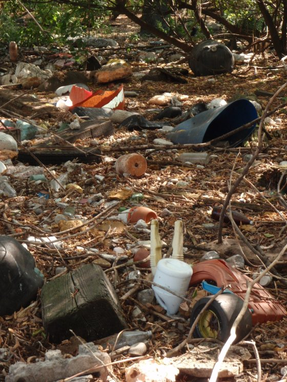 South Brother Island trash. Photo by Erik Baard.
