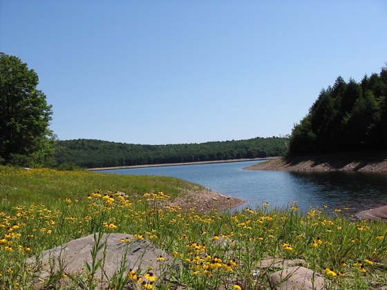 Neversink Reservoir. Photo by Catskill Watershed Corporation.